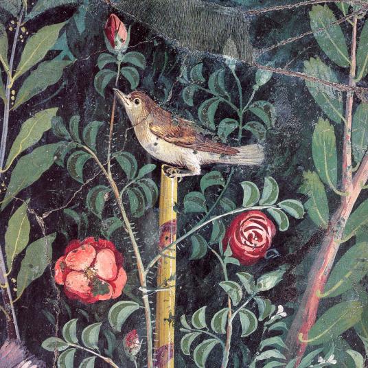myholyoke-birdie-e1518457527248.png