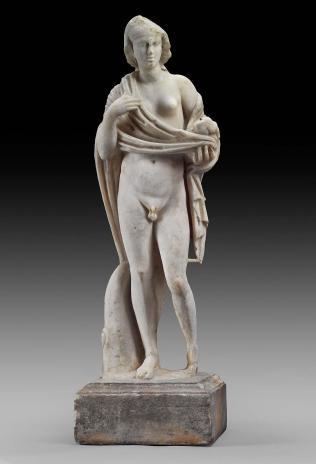 MFA Hermaphroditus